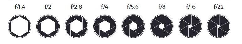 Schéma du diaphragme à différentes ouvertures avec la notation