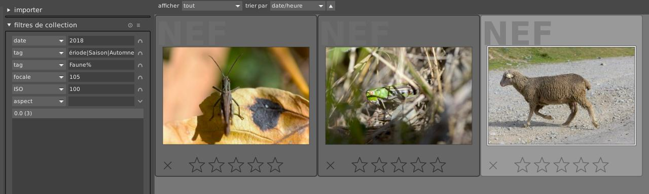 Vue des photos après filtres